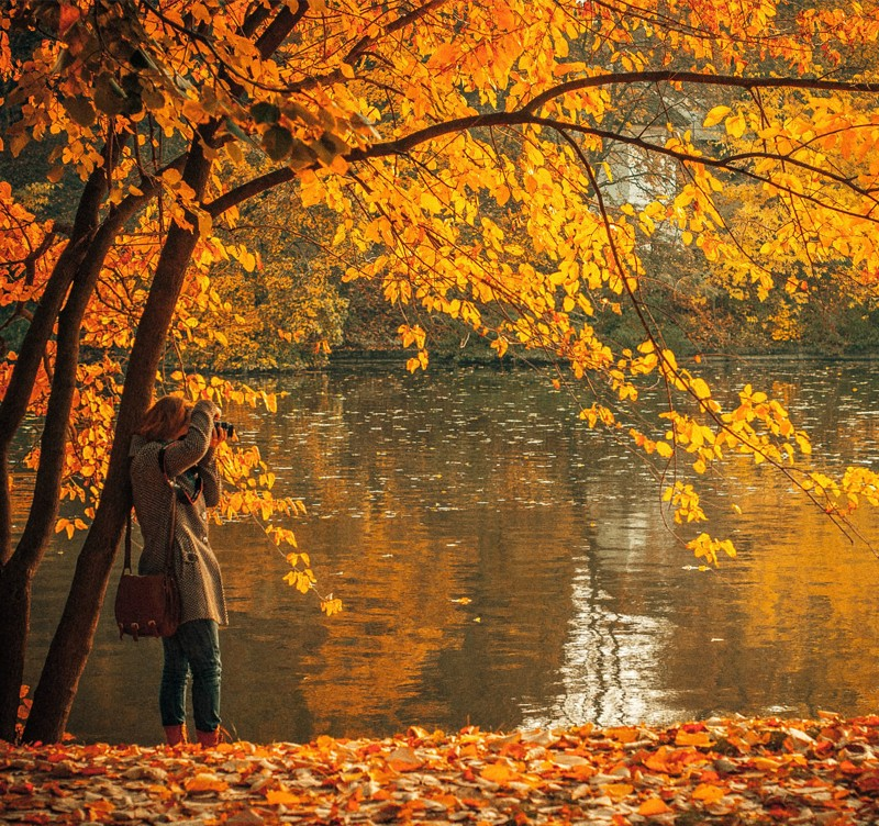 woman taking a picture in the autumn